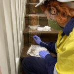 Person wearing PPE doing conservation work on linoleum on staircase